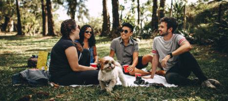 Vier junge Leute sitzen mit einem Hund auf einer Picknickdecke im Grünen